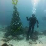富戸のクリスマスツリー151206
