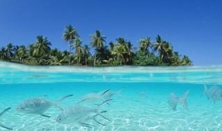 ダイビングや海で使われる単位について紹介