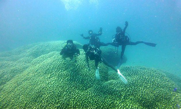 大仏サンゴをバックに記念写真 16.08.12