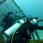 やぐら2.5漁礁にて 16.10.02