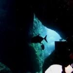 洞窟内でカッポレ 170910